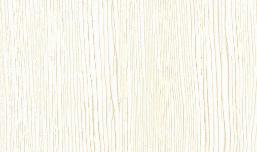 Rb 13Pg Biało Złoty